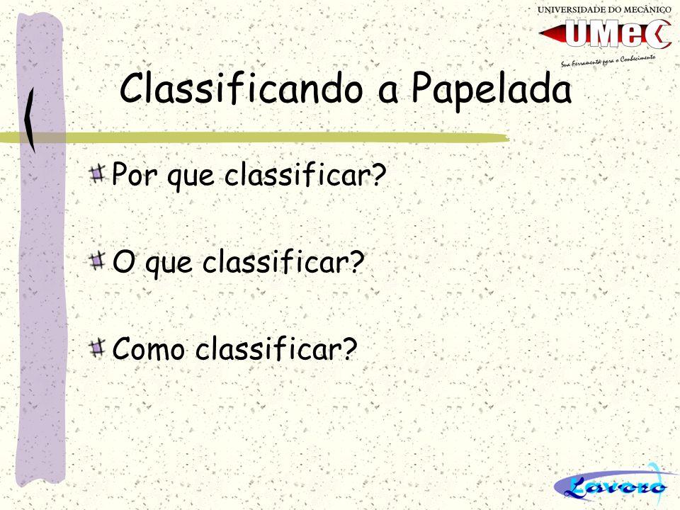 Classificando a Papelada Por que classificar? O que classificar? Como classificar?