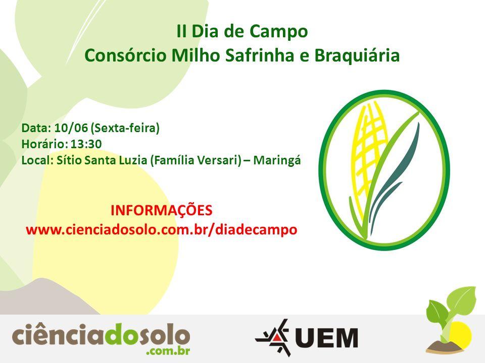 II Dia de Campo Consórcio Milho Safrinha e Braquiária Data: 10/06 (Sexta-feira) Horário: 13:30 Local: Sítio Santa Luzia (Família Versari) – Maringá IN