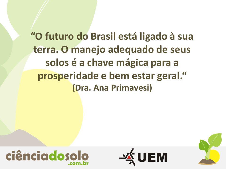 O futuro do Brasil está ligado à sua terra. O manejo adequado de seus solos é a chave mágica para a prosperidade e bem estar geral. (Dra. Ana Primaves
