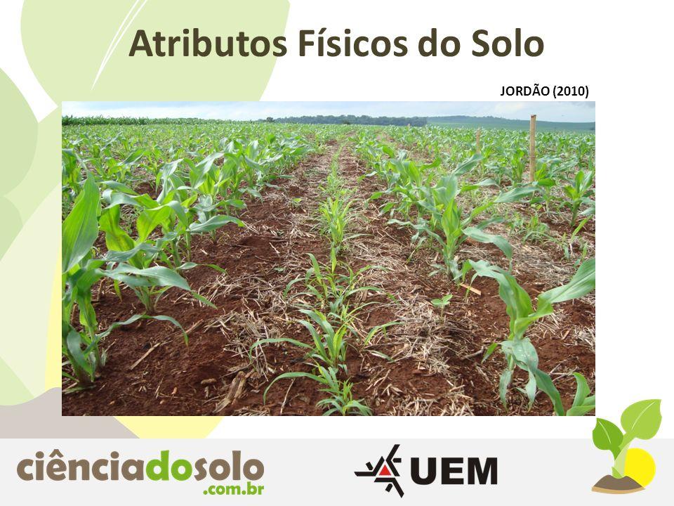 Consórcio Milho Safrinha + BraquiáriaMilho Solteiro Atributos Físicos do Solo JORDÃO (2010)