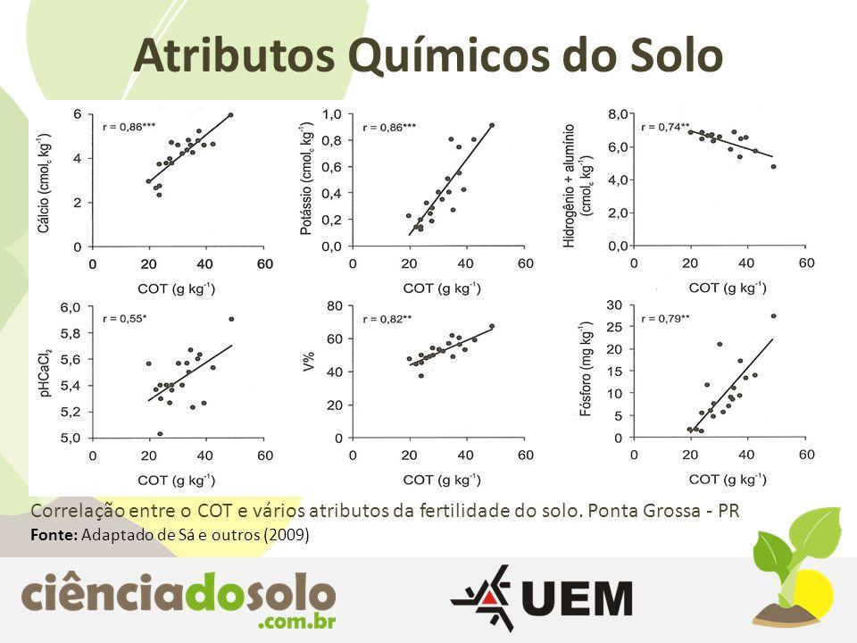 Atributos Químicos do Solo Correlação entre o COT e vários atributos da fertilidade do solo. Ponta Grossa - PR Fonte: Adaptado de Sá e outros (2009)