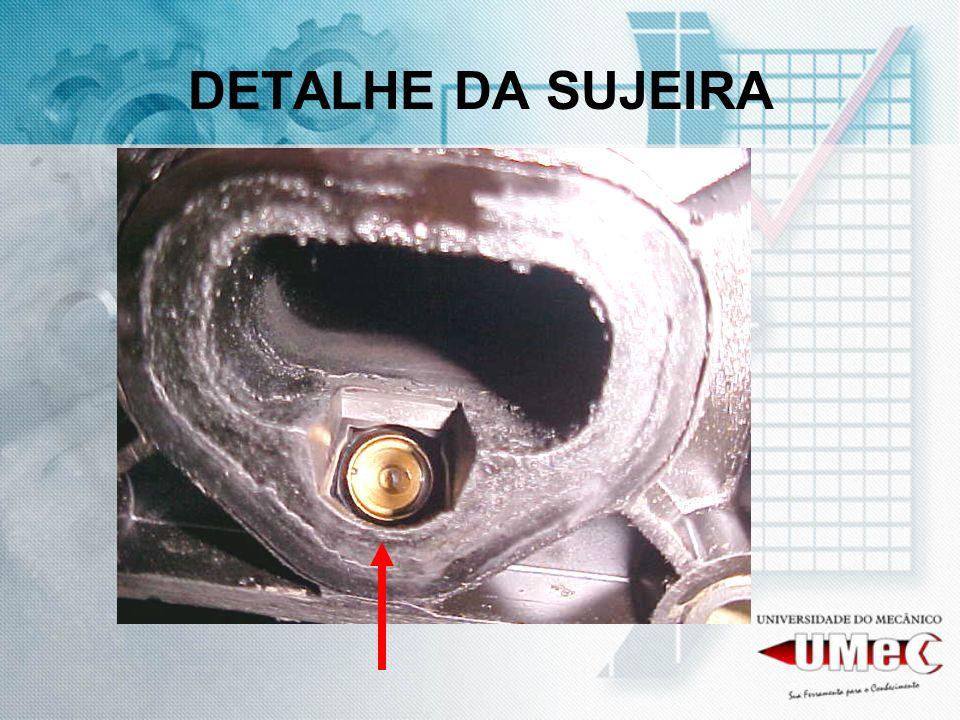 DETALHE DA SUJEIRA