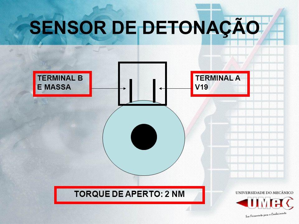 SENSOR DE DETONAÇÃO TERMINAL A V19 TERMINAL B E MASSA TORQUE DE APERTO: 2 NM