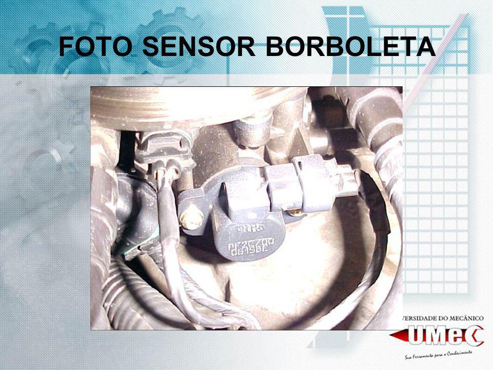FOTO SENSOR BORBOLETA