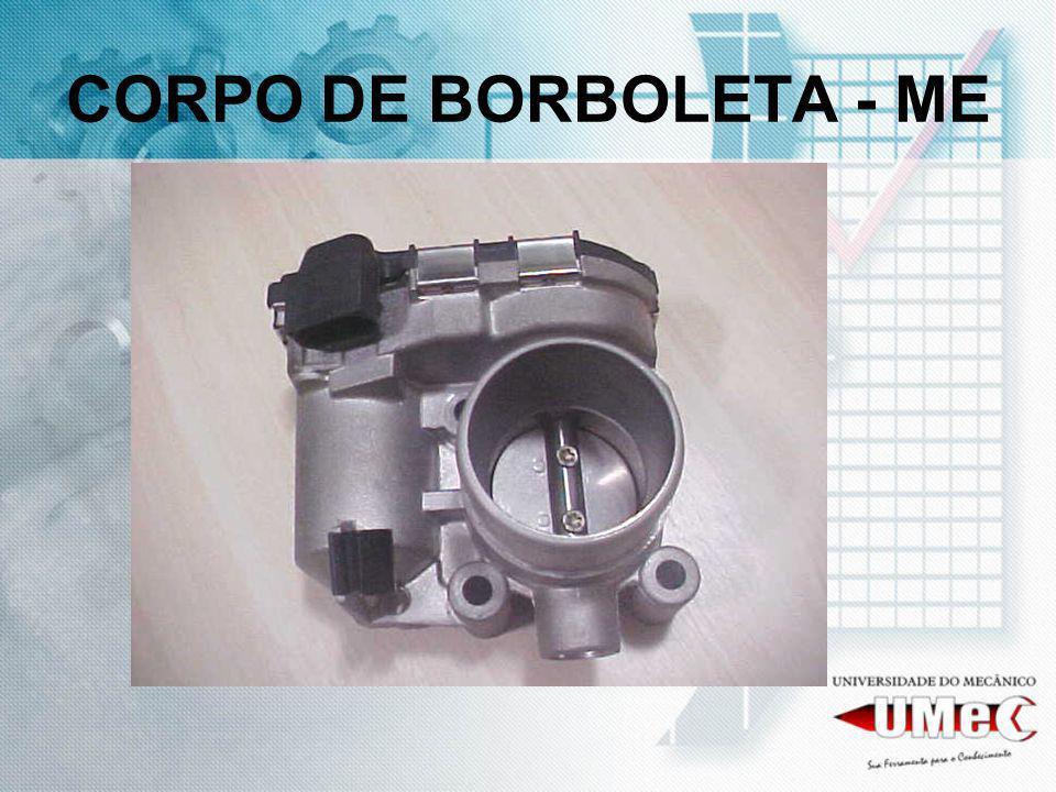 CORPO DE BORBOLETA - ME