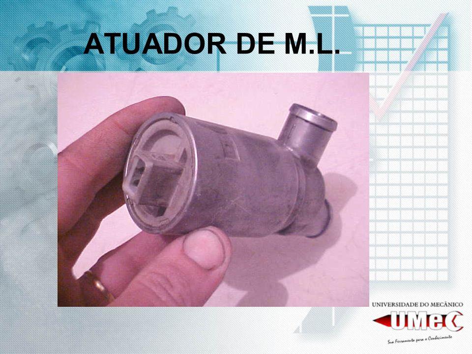ATUADOR DE M.L.
