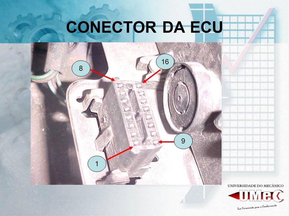 CONECTOR DA ECU 9 16 8 1