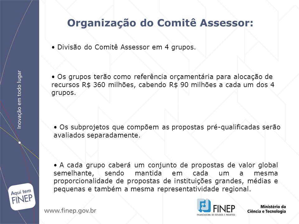 Organização do Comitê Assessor: Os grupos terão como referência orçamentária para alocação de recursos R$ 360 milhões, cabendo R$ 90 milhões a cada um
