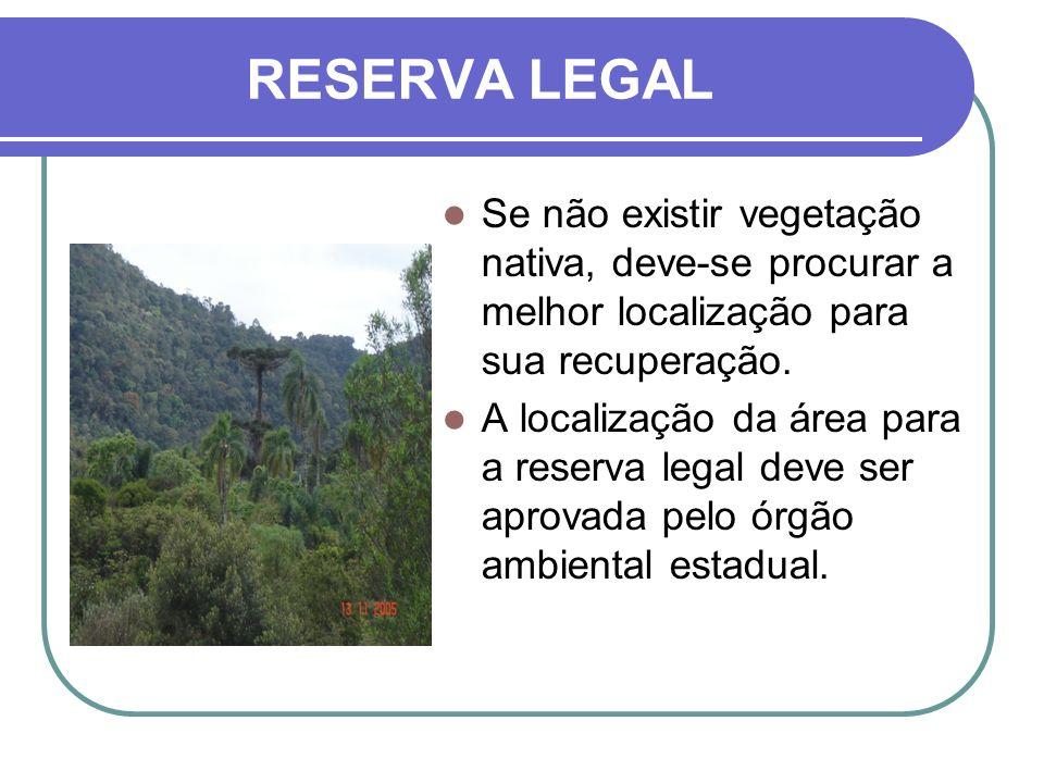 RESERVA LEGAL Se não existir vegetação nativa, deve-se procurar a melhor localização para sua recuperação. A localização da área para a reserva legal