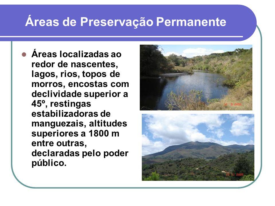 Áreas de Preservação Permanente Áreas localizadas ao redor de nascentes, lagos, rios, topos de morros, encostas com declividade superior a 45º, restin