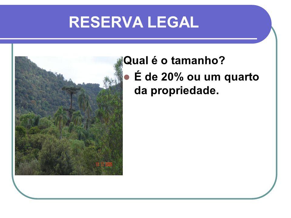 RESERVA LEGAL Qual é o tamanho? É de 20% ou um quarto da propriedade.