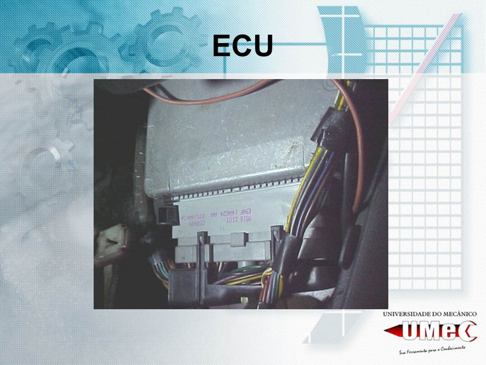 A APLICAÇÃO Este sistema está aplicado na linha Autolatina (holding que incluía as linhas VW e FORD): Família GOL – PARATI Família ESCORT – LOGUS – POINTER – VERONA - PAMPA Família SANTANA – QUANTUN –ROYALE - VERSAILLES de 1994 à 1996 Trata-se de um sistema monoponto digital.
