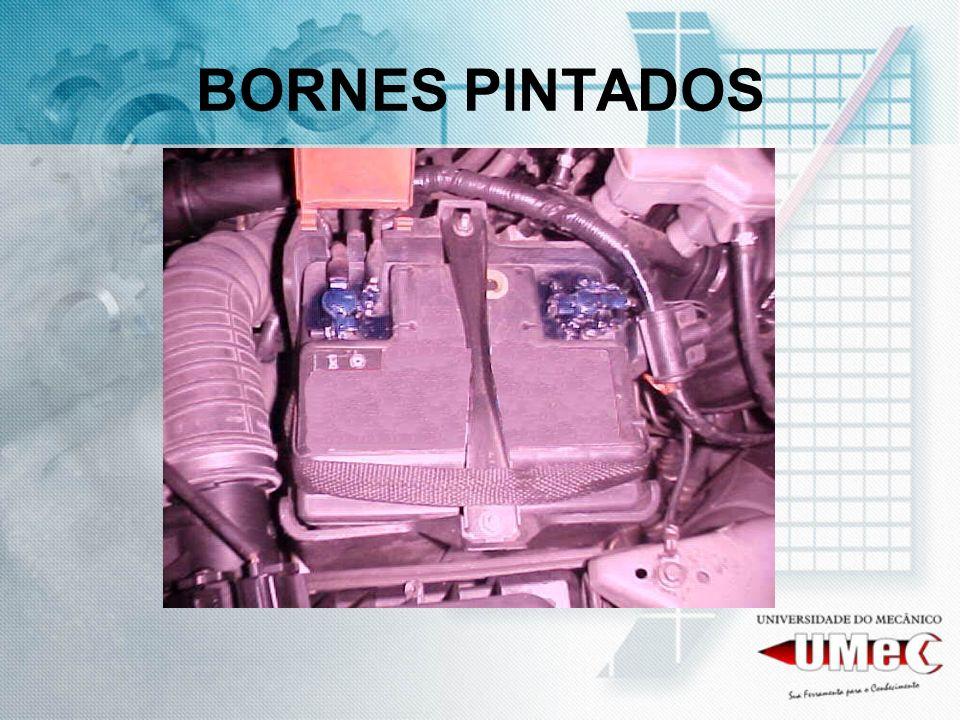 BORNES PINTADOS