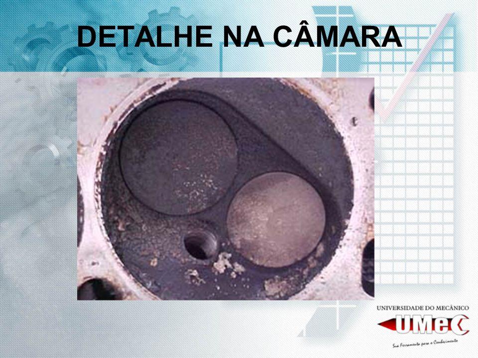 DETALHE NA CÂMARA