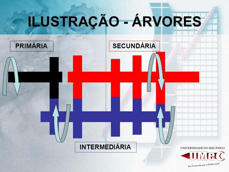 ILUSTRAÇÃO - ÁRVORES PRIMÁRIA INTERMEDIÁRIA SECUNDÁRIA