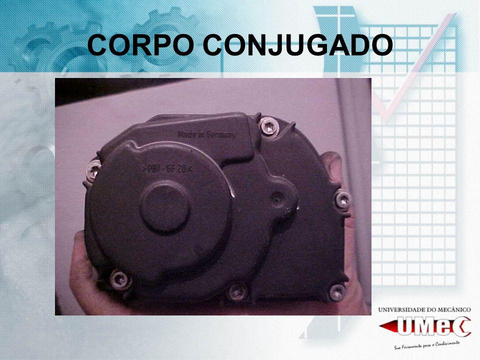 CORPO CONJUGADO