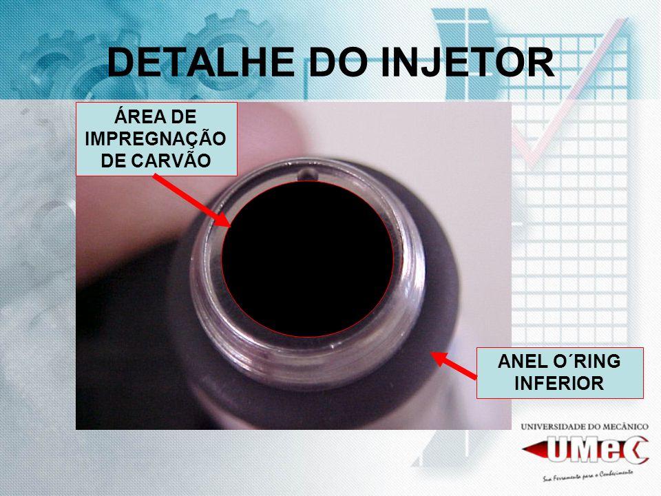 DETALHE DO INJETOR ÁREA DE IMPREGNAÇÃO DE CARVÃO ANEL O´RING INFERIOR
