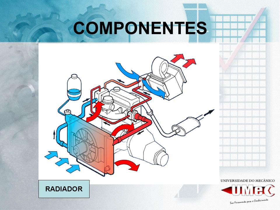 COMPONENTES RADIADOR