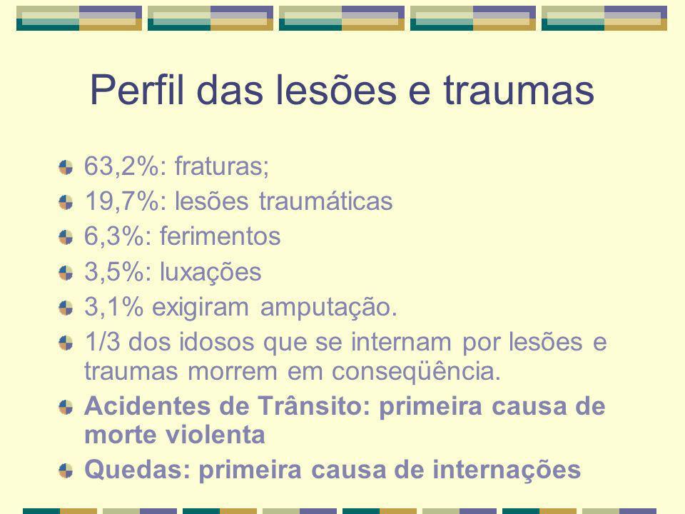 Perfil das lesões e traumas 63,2%: fraturas; 19,7%: lesões traumáticas 6,3%: ferimentos 3,5%: luxações 3,1% exigiram amputação. 1/3 dos idosos que se