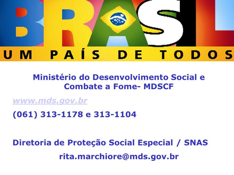 Ministério do Desenvolvimento Social e Combate à Fome Secretaria Nacional de Assistência Social Ministério do Desenvolvimento Social e Combate a Fome-