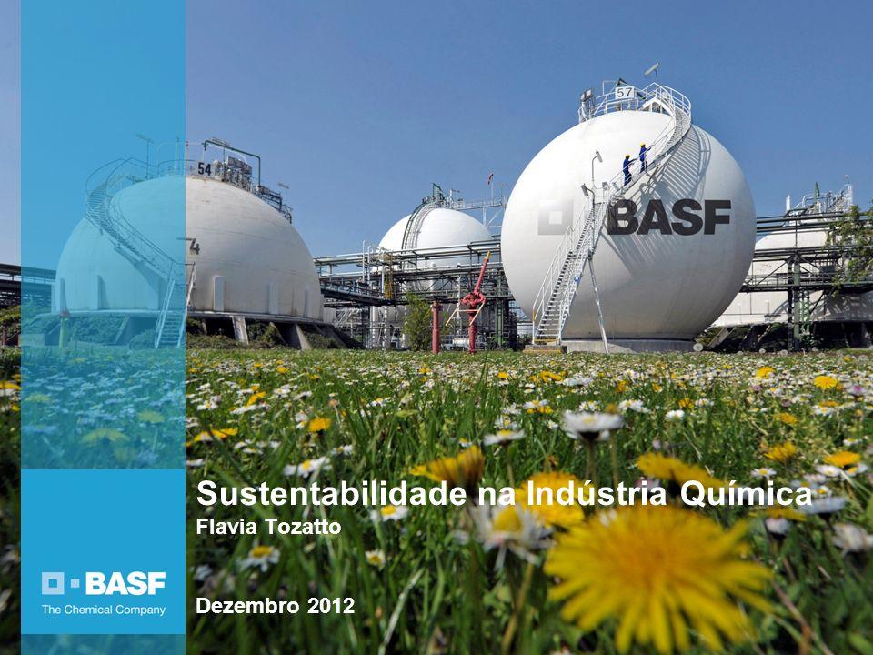 Sustentabilidade na Indústria Química Flavia Tozatto Dezembro 2012