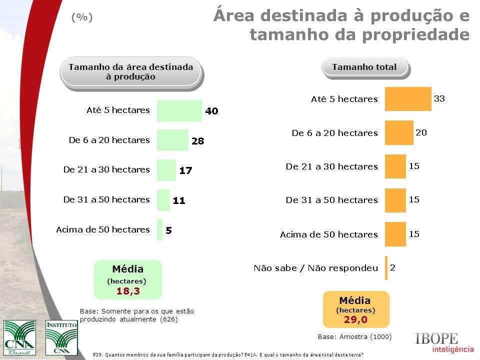 P39. Quantos membros da sua família participam da produção? P41A. E qual o tamanho da área total desta terra? Área destinada à produção e tamanho da p