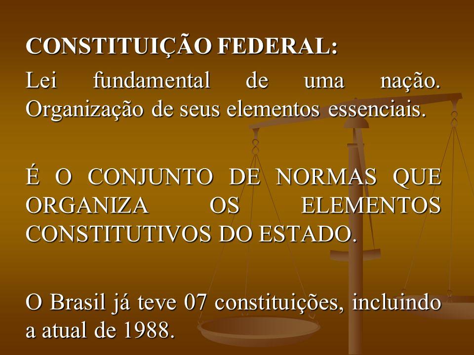 CONSTITUIÇÃO FEDERAL: Lei fundamental de uma nação.