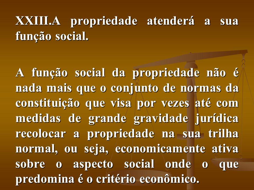 XXIII.A propriedade atenderá a sua função social. A função social da propriedade não é nada mais que o conjunto de normas da constituição que visa por