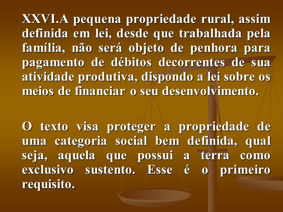 XXVI.A pequena propriedade rural, assim definida em lei, desde que trabalhada pela família, não será objeto de penhora para pagamento de débitos decor