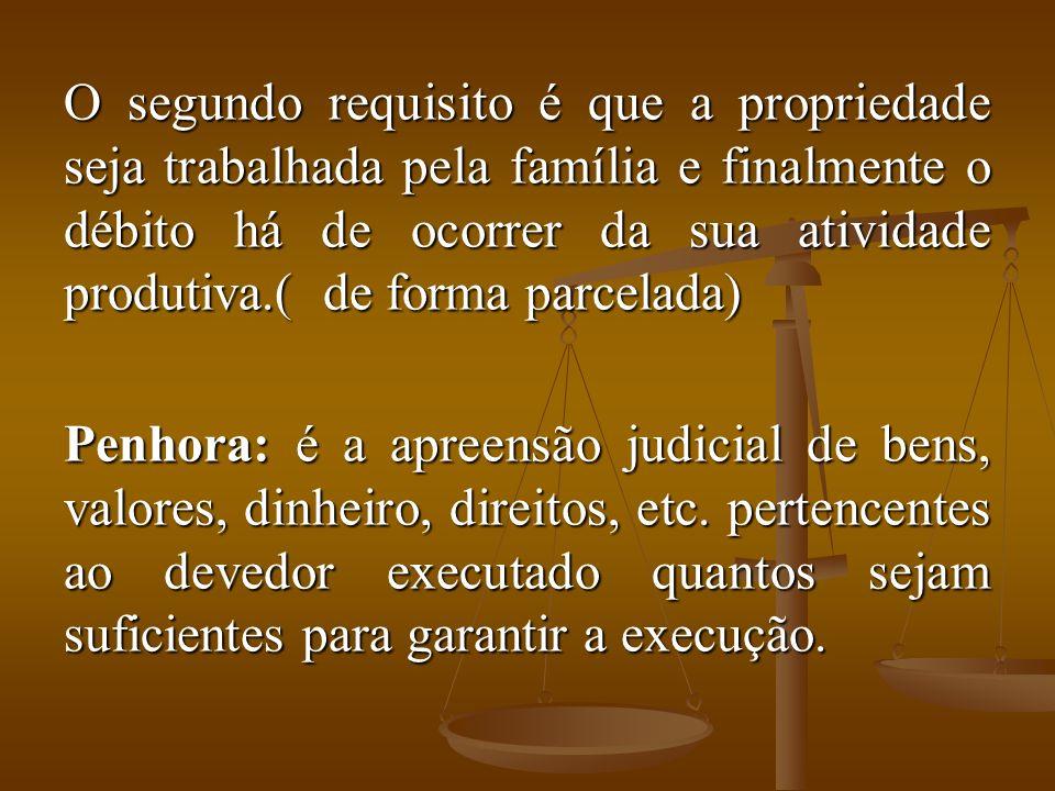 O segundo requisito é que a propriedade seja trabalhada pela família e finalmente o débito há de ocorrer da sua atividade produtiva.( de forma parcela