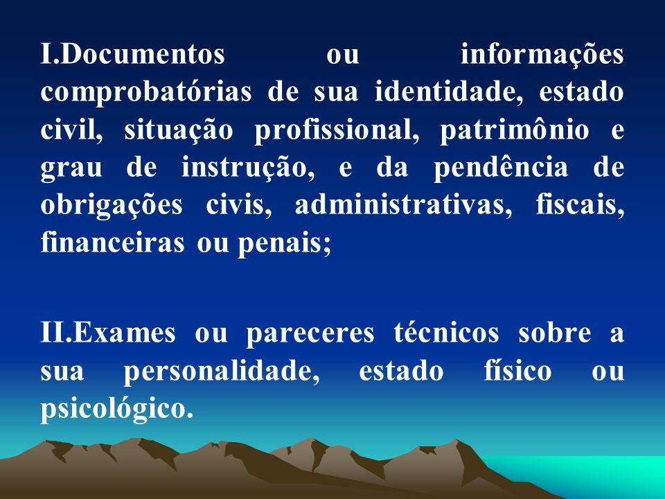 I.Documentos ou informações comprobatórias de sua identidade, estado civil, situação profissional, patrimônio e grau de instrução, e da pendência de o