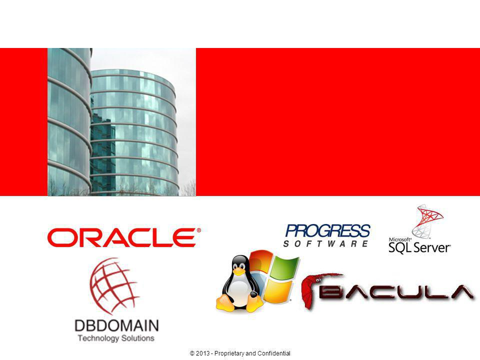 © 2013 DBDOMAIN Corporation – Proprietary and Confidential – 2 –