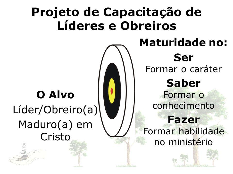 Projeto de Capacitação de Líderes e Obreiros O Alvo Líder/Obreiro(a) Maduro(a) em Cristo Maturidade no: Ser Formar o caráter Saber Formar o conhecimen