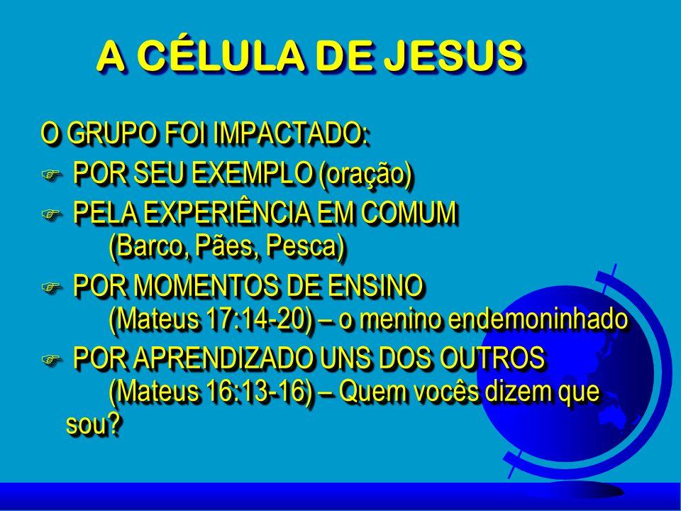 O GRUPO FOI IMPACTADO: F POR SEU EXEMPLO (oração) F PELA EXPERIÊNCIA EM COMUM (Barco, Pães, Pesca) F POR MOMENTOS DE ENSINO (Mateus 17:14-20) – o meni