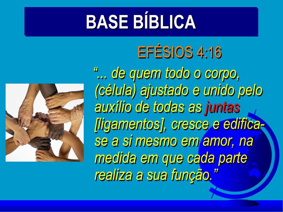 BASE BÍBLICA EFÉSIOS 4:16... de quem todo o corpo, (célula) ajustado e unido pelo auxílio de todas as juntas [ligamentos], cresce e edifica- se a si m