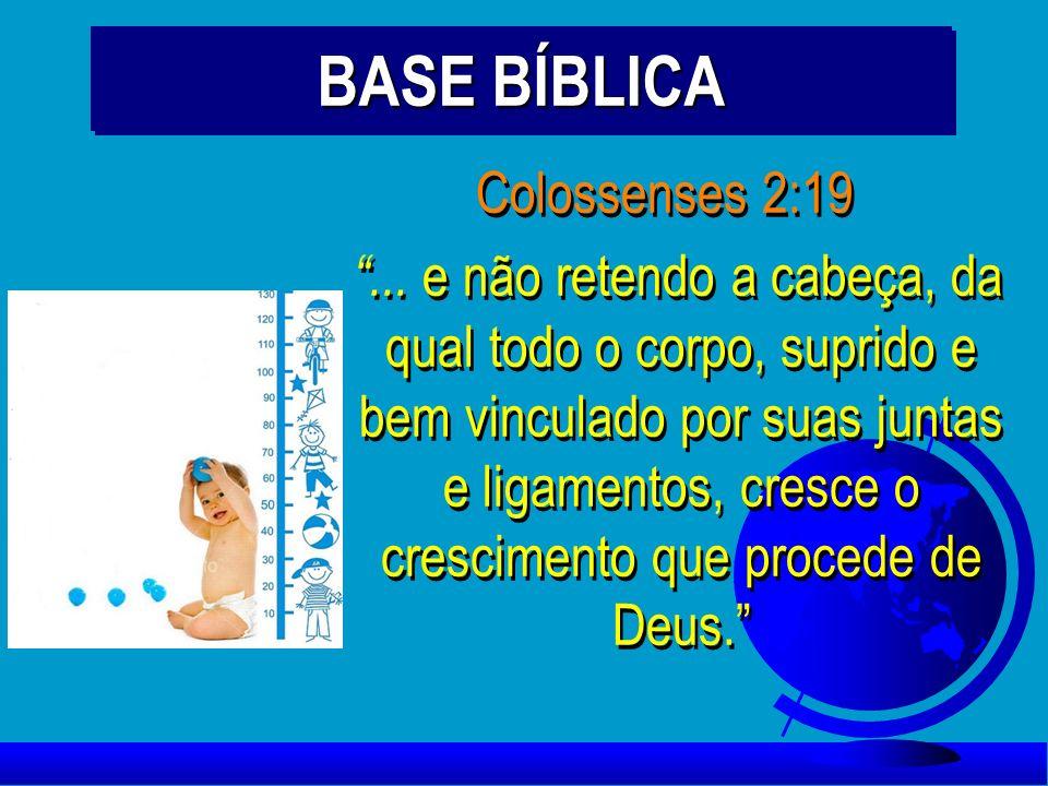 BASE BÍBLICA Colossenses 2:19... e não retendo a cabeça, da qual todo o corpo, suprido e bem vinculado por suas juntas e ligamentos, cresce o crescime