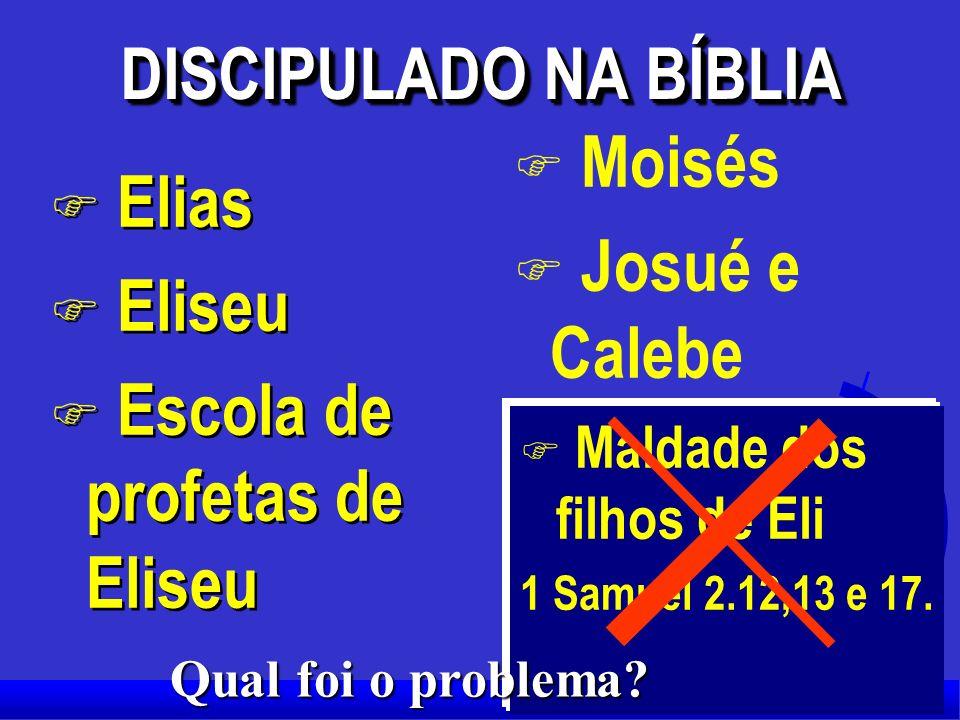 DISCIPULADO NA BÍBLIA X JESUS com os doze. X BARNABÉ com Paulo (Um dos 70) X PAULO com TIMÓTEO X 2 Timóteo 2:2 Tome os ensinamentos que você me ouviu