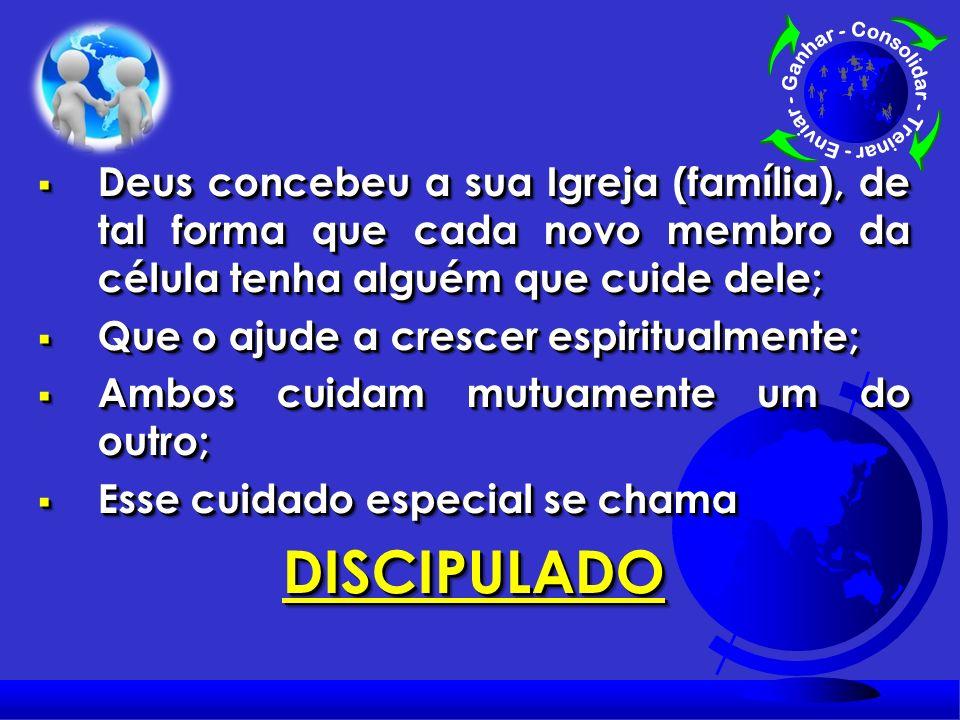 1ª VERDADE: 1. Discipulado foi concebido por Deus para conduzir cada membro da sua família a maturidade.