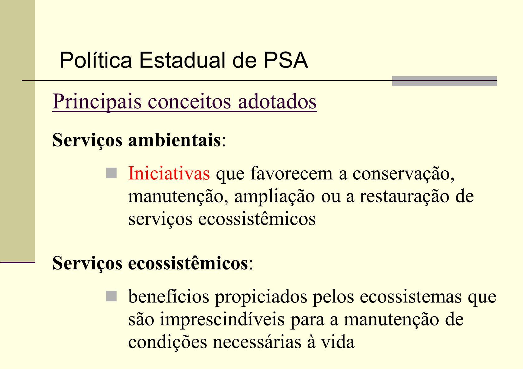 Principais conceitos adotados Serviços ambientais: Iniciativas que favorecem a conservação, manutenção, ampliação ou a restauração de serviços ecossis