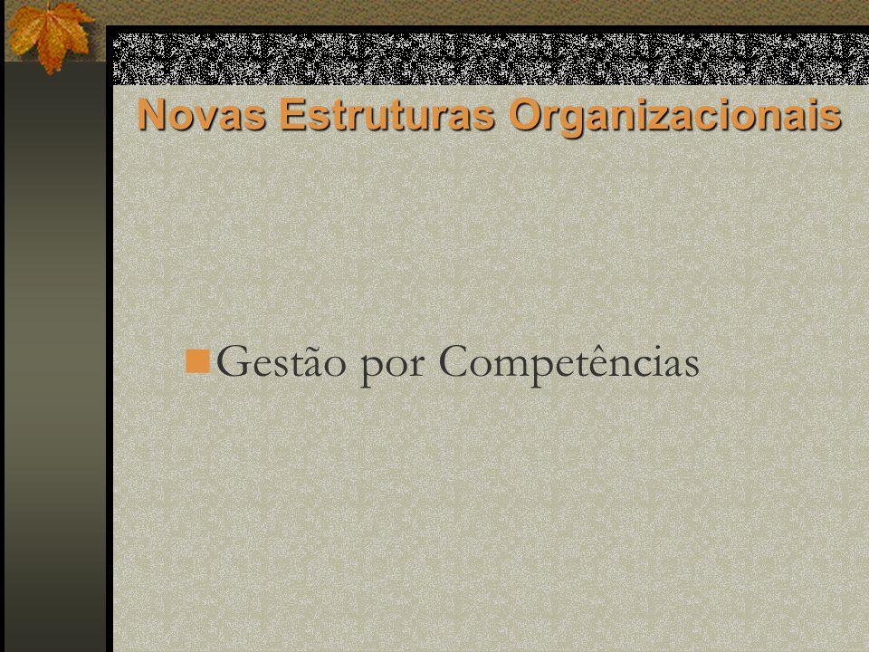 Novas Estruturas Organizacionais Gestão por Competências