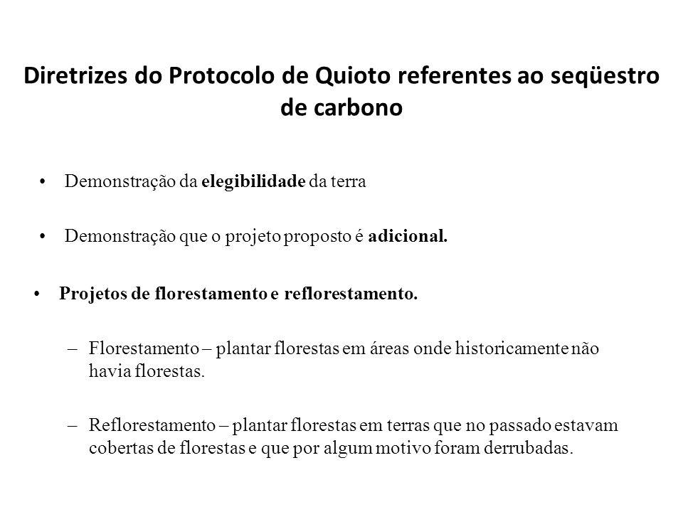 Diretrizes do Protocolo de Quioto referentes ao seqüestro de carbono Demonstração da elegibilidade da terra Demonstração que o projeto proposto é adic
