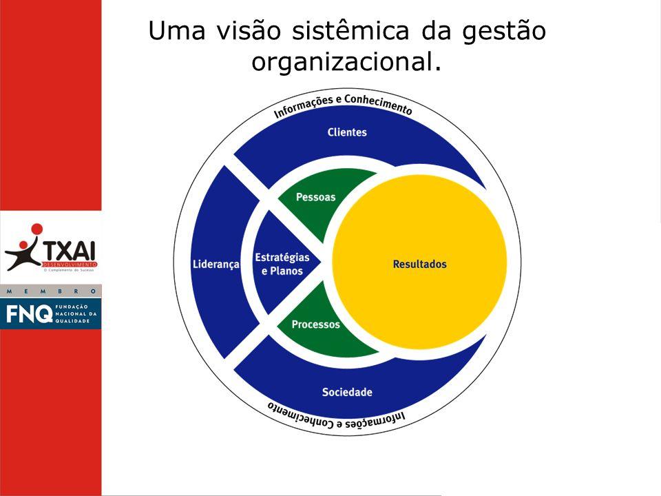 Uma visão sistêmica da gestão organizacional.