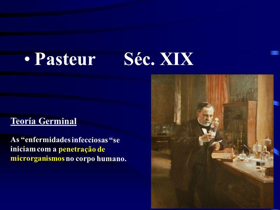 Pasteur Séc. XIX Teoría Germinal As enfermidades infecciosas se iniciam com a penetração de microrganismos no corpo humano.