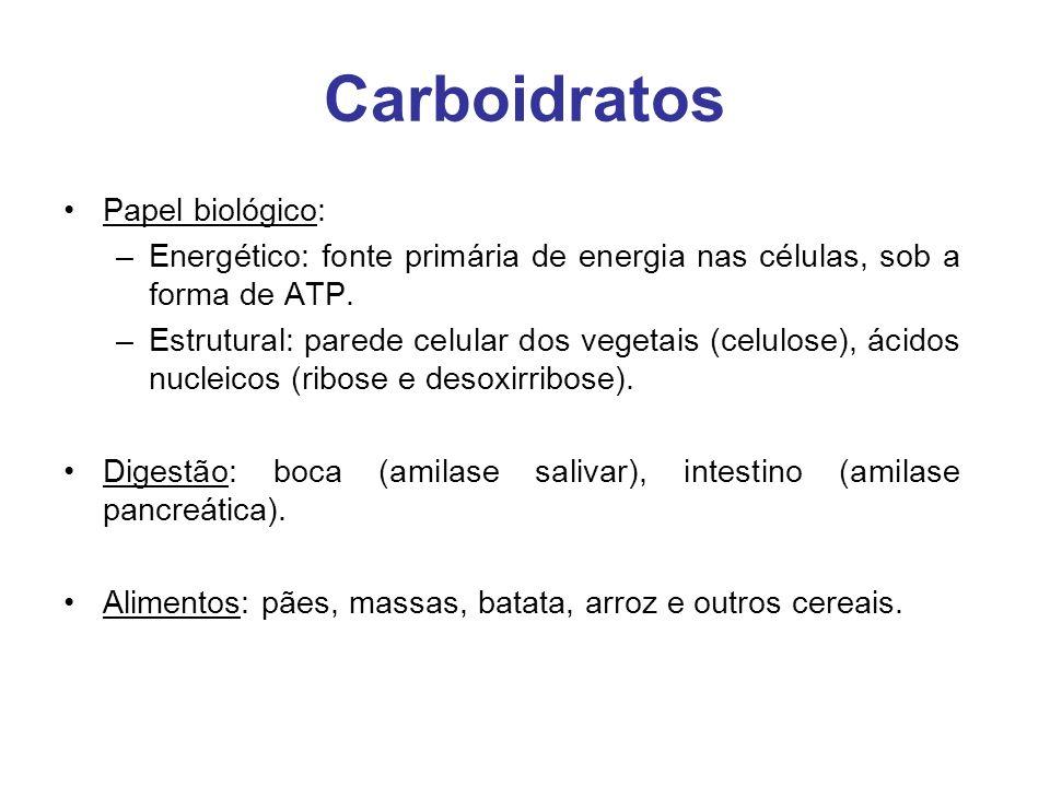 Carboidratos Papel biológico: –Energético: fonte primária de energia nas células, sob a forma de ATP. –Estrutural: parede celular dos vegetais (celulo