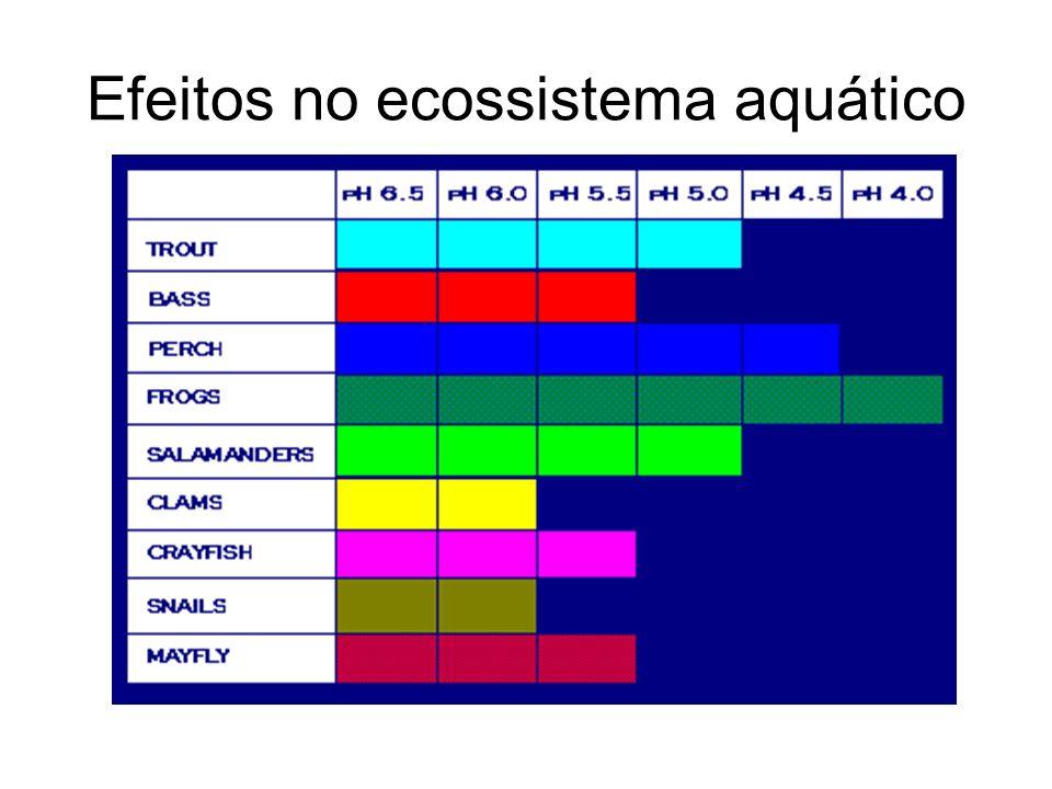 Efeitos no ecossistema aquático