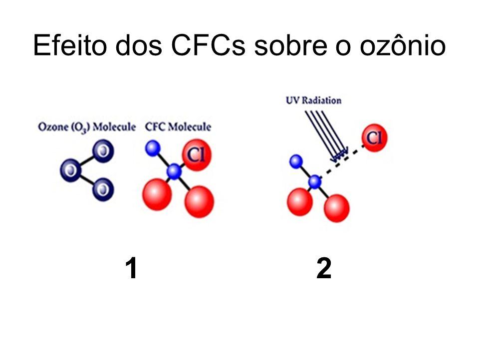 Efeito dos CFCs sobre o ozônio 12