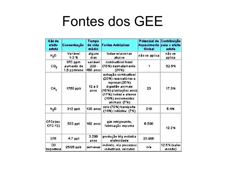 Fontes dos GEE