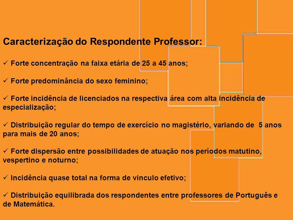 Caracterização do Respondente Professor: Forte concentração na faixa etária de 25 a 45 anos; Forte predominância do sexo feminino; Forte incidência de