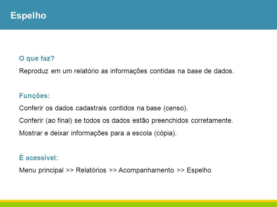 Espelho O que faz? Reproduz em um relatório as informações contidas na base de dados. Funções: Conferir os dados cadastrais contidos na base (censo).