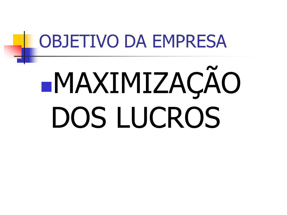 OBJETIVO DA EMPRESA MAXIMIZAÇÃO DOS LUCROS